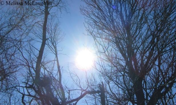 End of World Sun watermark