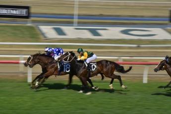 horseracing-2778327_1920